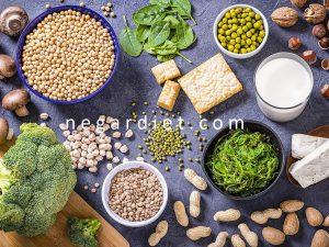 راهنمای دریافت پروتئین در گیاهخواری