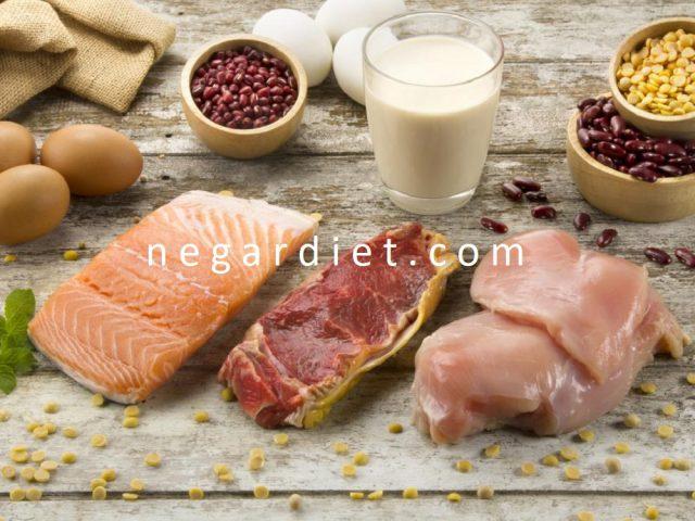 پروتئین گیاهی و حیوانی چه تفاوت هایی دارند؟