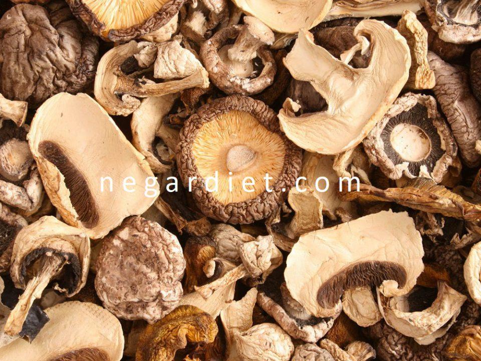 روش تهیه قارچ خشک